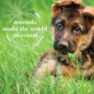 Pets_AnimalsMakeTheWorldGoRound